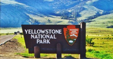 Beautiful Yellowstone National Park in U.S(United States)