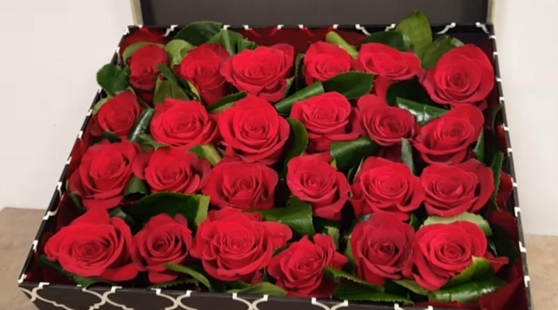 Valentines Day in Brazil- Dia Dos Namorados no Brazil
