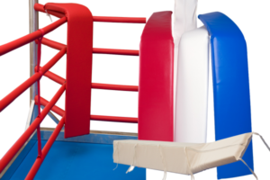 boxing ring corner pellow