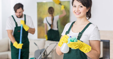 professional cleaning services london