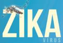 Pregnancy and Zika virus